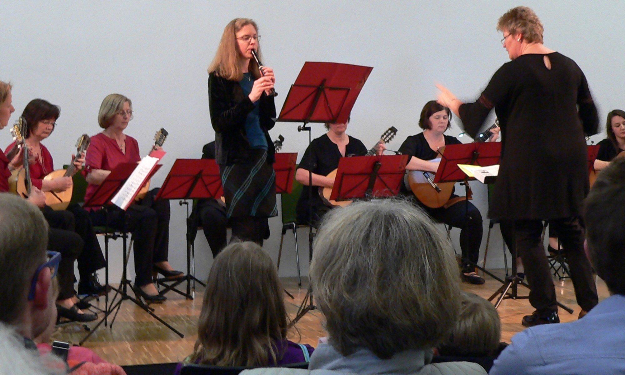 Auftritt des Zupf-Ensembles Lohr am 28. April 2018 | Fotos © B. Schneider