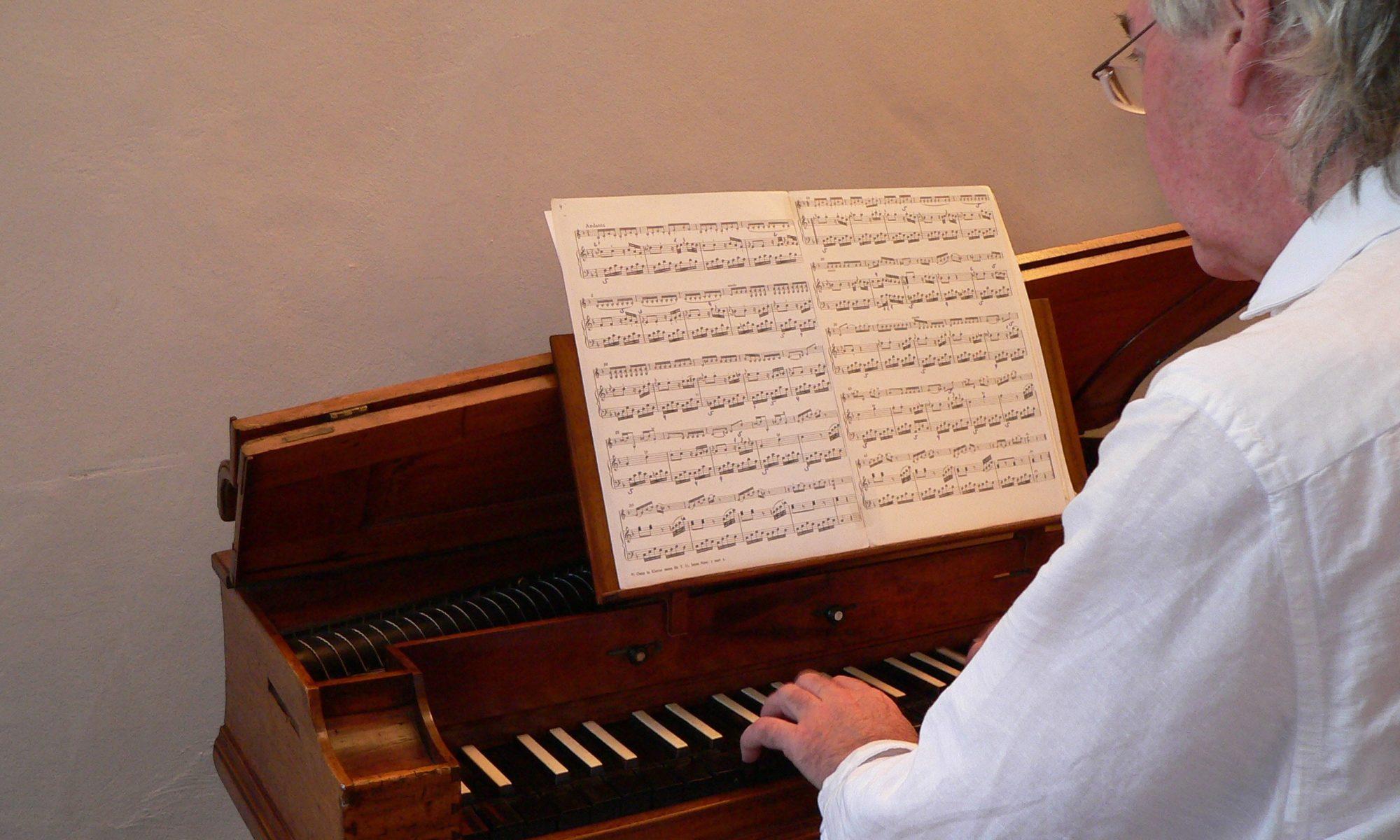 Michael Günther spielt ein Pantaleon aus Ulm auf Schloss Homburg. Foto: B. Schneider