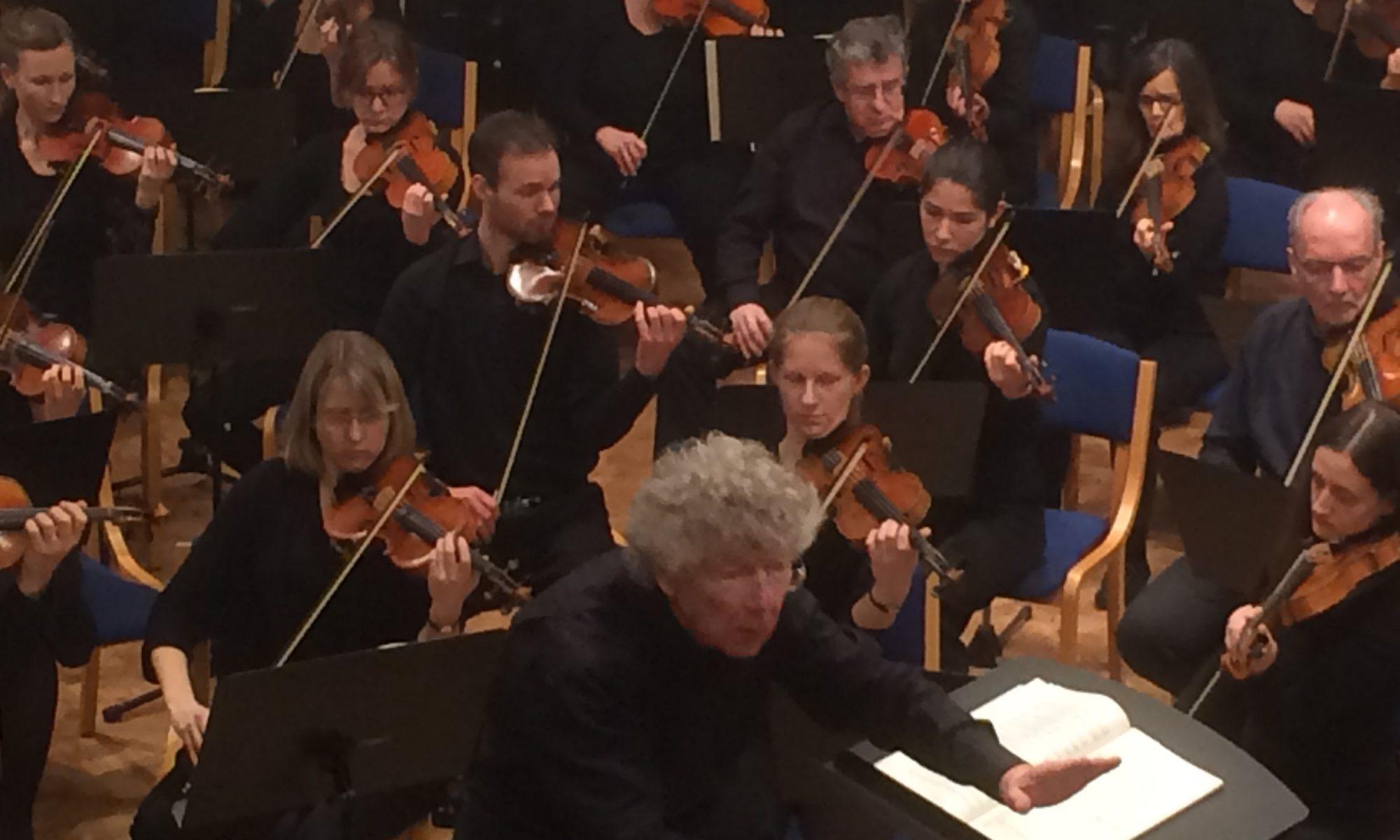 Das fränkische Sinfonieorchester Con Brio unter der Leitung von Gert Feser. | Foto: B. Schneide