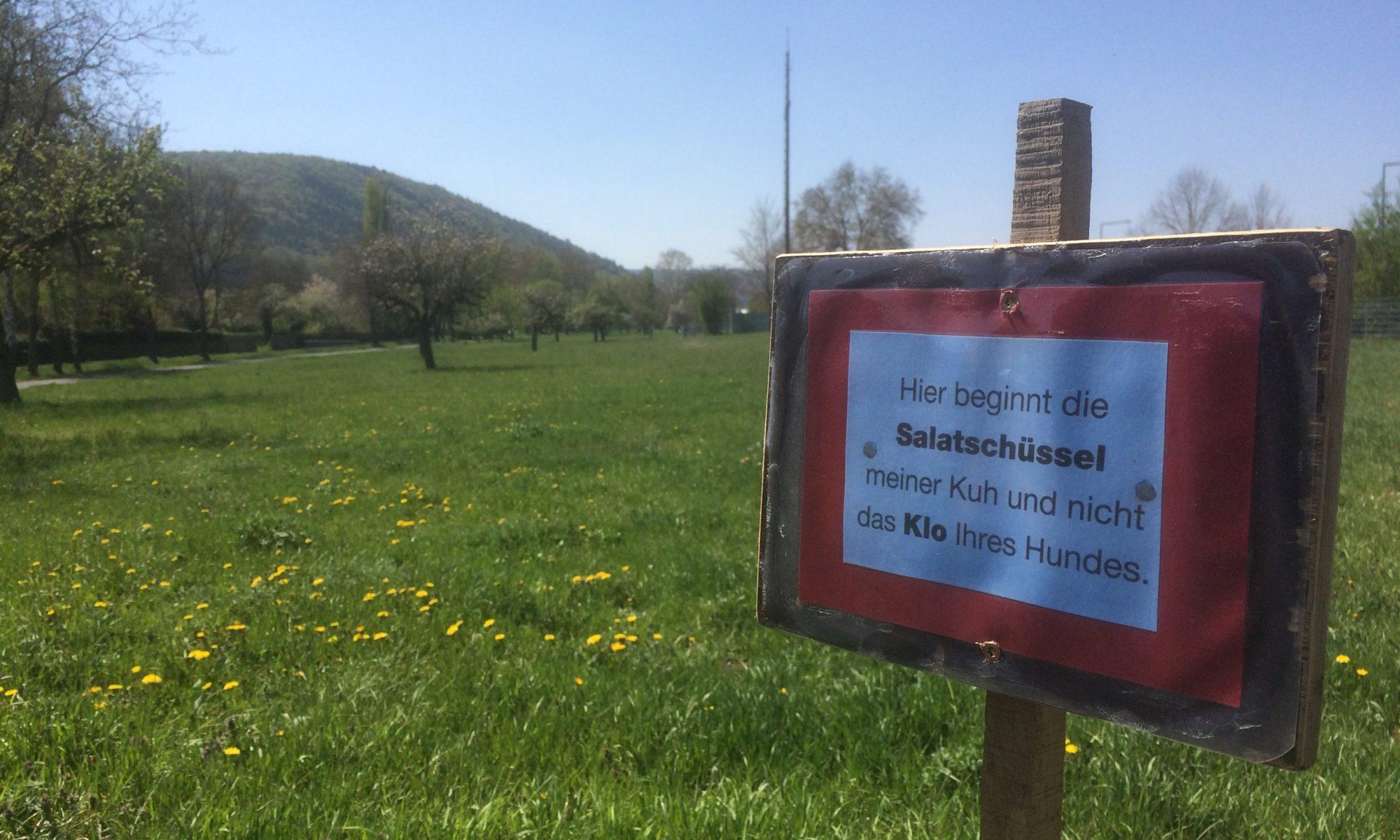 Weide und nicht Hundeklo an der Schleuse Steinbach. | Foto: B. Schneider