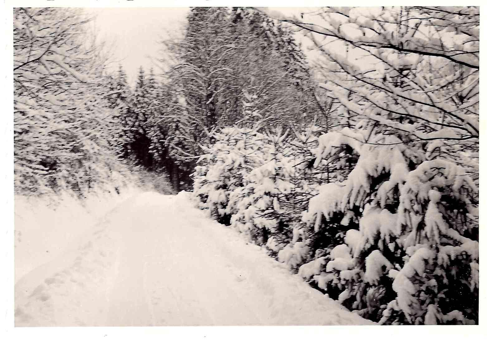 Verschneites Buchental. | Foto: Paul Brey
