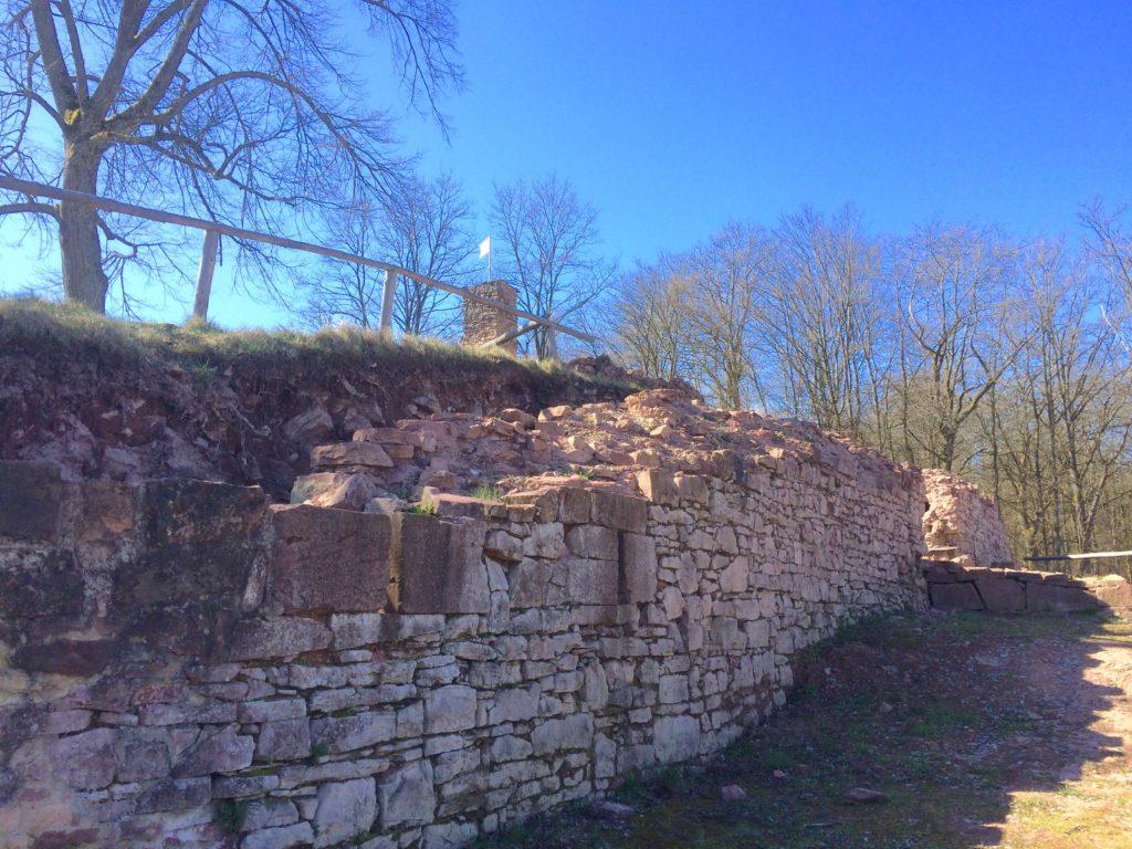Der Geschichts- und Burgverein Partenstein möchte, dass auch die letzte freigelegte Mauer noch saniert - also befestigt und gesichert - wird. Doch das Landesamt für Denkmalpflege teilt nicht unbedingt diese Auffassung. | Foto: B. Schneider