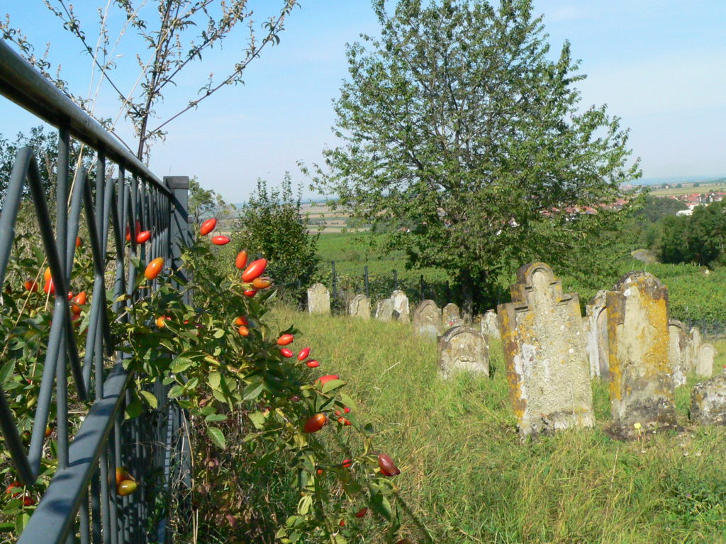 """In Hüttenheim startet die """"TraumRunde"""" unmittelbar am jüdischen Friedhof."""