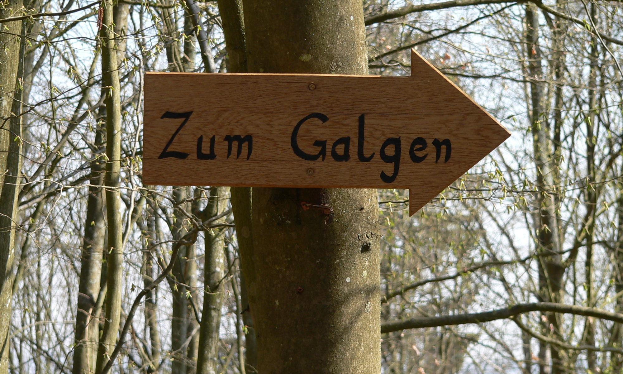 Der Arme-Sünder-Pfad führte in Lohr von der Stadt zur Richtstätte hinauf. | Foto: B. Schneider